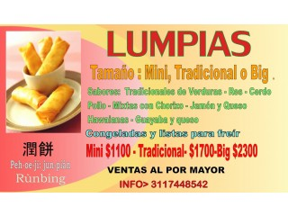 LUMPIAS --ROLLITOS CHINOS